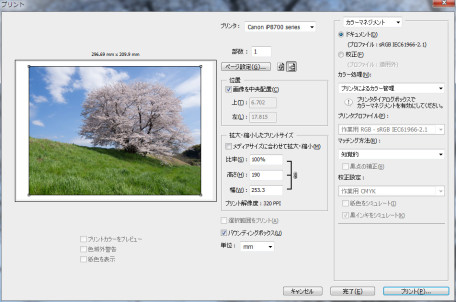 iP8730_print_PS